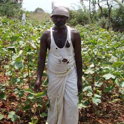 Our Beneficiary Small Farmer