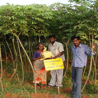 SAWED Women Farmer Empowerment Project